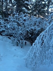 Lots of snow! Trails groomed as of Dec 23! Enjoy!